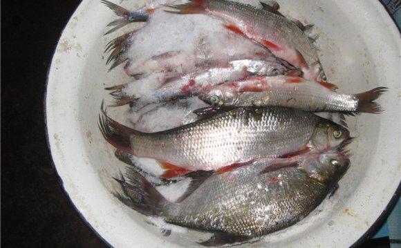 После того как почистил рыбу