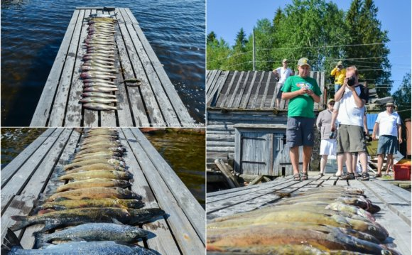 очистить рыбу от чешуи